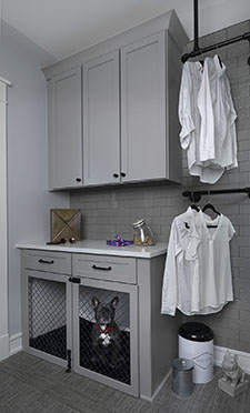 Laundry-dog-x372